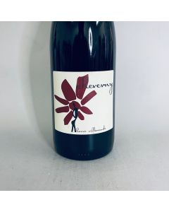 2019 Herve Villemade Cheverny Rouge